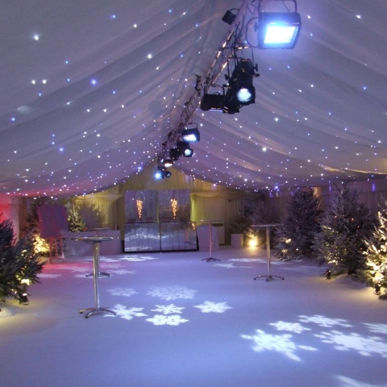 IvoryStarlight-Winter.jpg