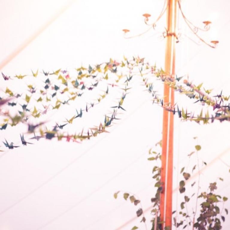 interior_birds.jpg